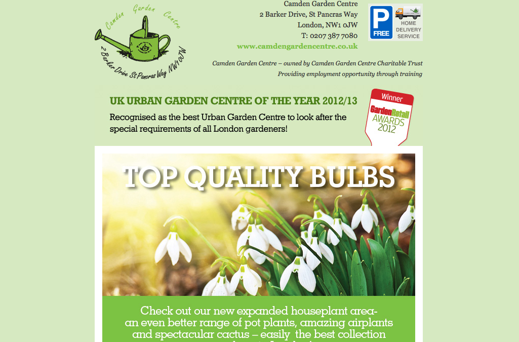 Latest Email Newsletter Offers